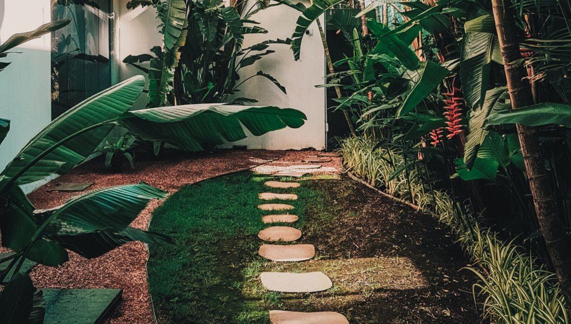 garden landscape walkway view