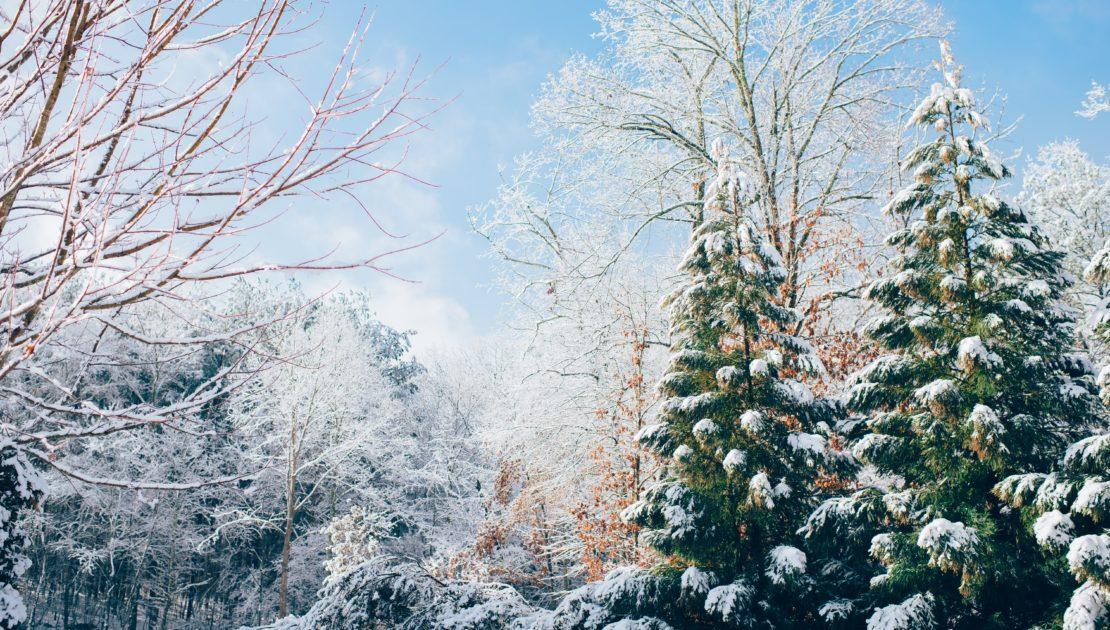 Outdoor Planning in Winter